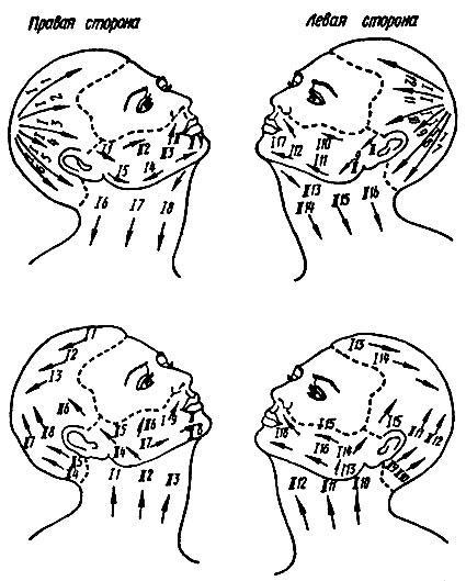 Схема бритья лица и головы: 1