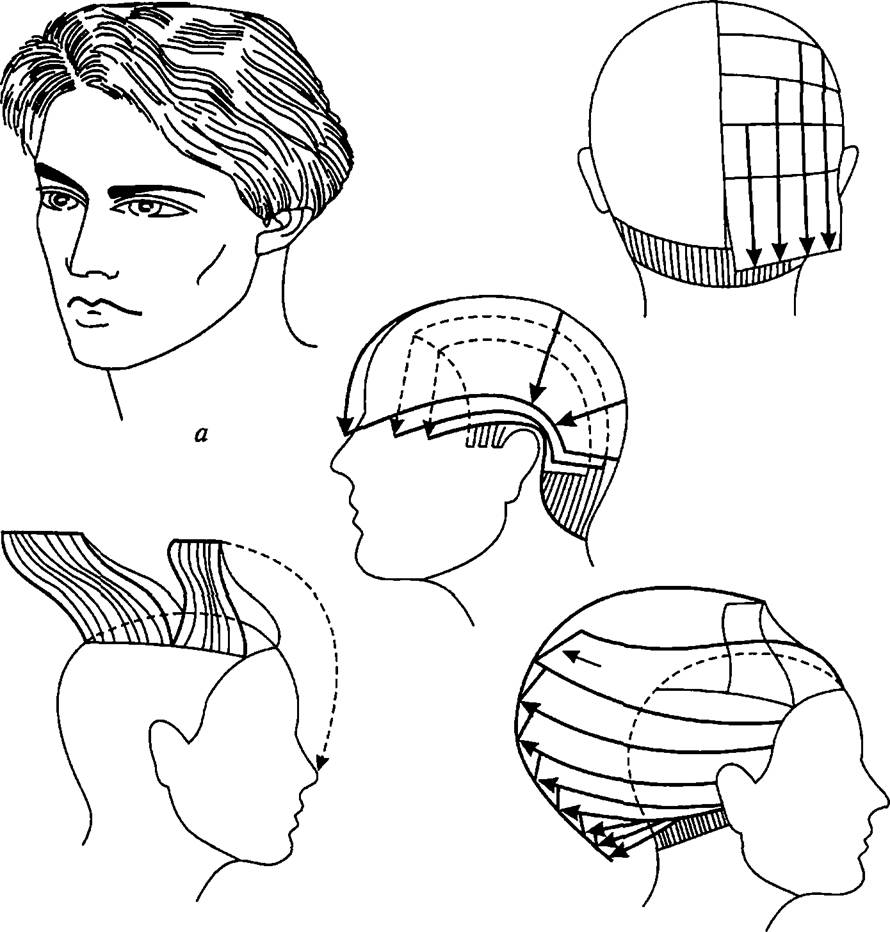 Технология и схема мужской стрижки теннис
